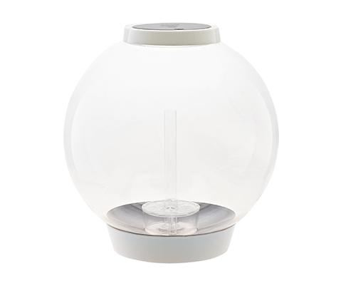 Acquario Biorb di forma sferica